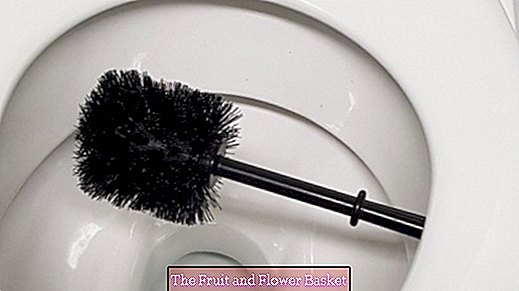 Disinfect toilet brush