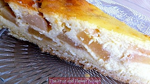 Apple quark cake