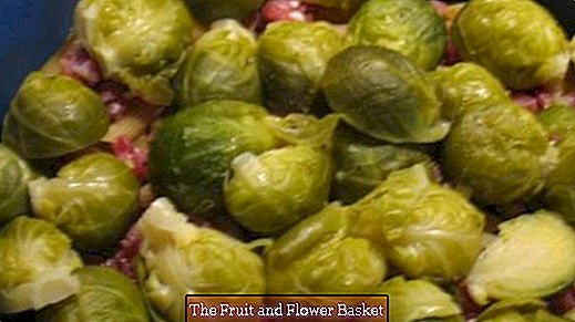 Noodle brussels sprouts and ham gratin