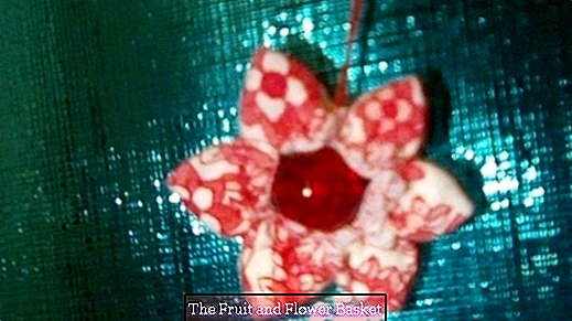 Make flowers from fabric