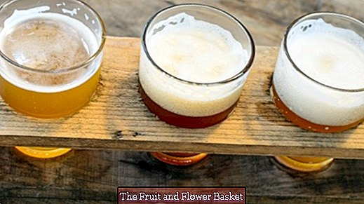Liquid bread - what you should know about beer