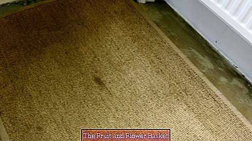 Remove carpet stains with a glass