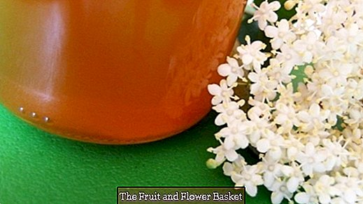 Elderflower apple jelly