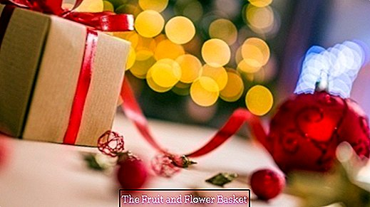 Christmas Gifts Tips from TheFruitAndFlowerBasket Team | Part 1