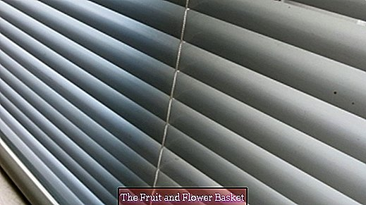 Clean blinds with SODA