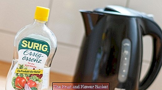 Rengör toaletten och vattenkokaren med kokande vinäger
