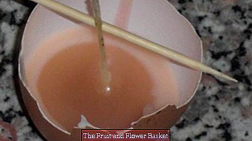 Make egg candles yourself - pour candles for the Easter season