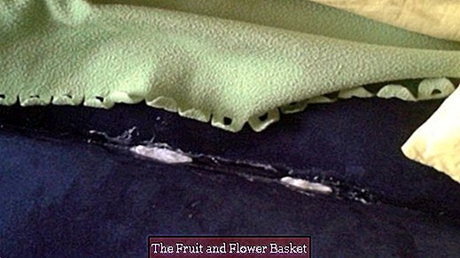 Repair the airbed