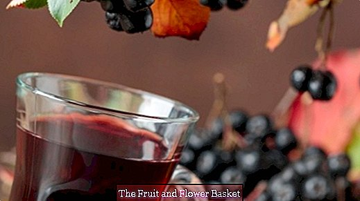 Autumn liqueur with elderberries, sloes and cinnamon