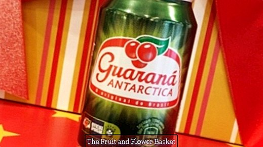 Guarana lemonade - caffeinated drink