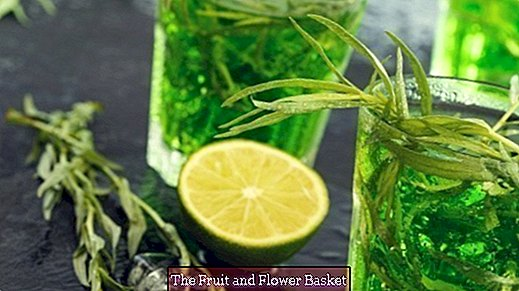 Refreshing tarragon drink