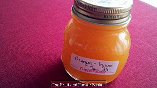 Orange - ginger jam