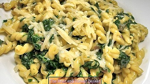 Fresh spinach leaves with mozzarella and noodles