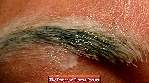 Plucking eyebrows - almost painless