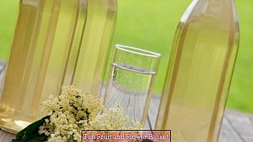 Make elderflower syrup yourself
