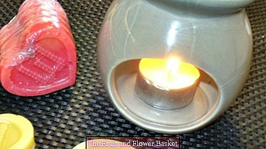 Use wax melts (fragrance starts, scented candles) more sparingly