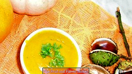 Pumpkin soup with coconut cream, ginger and mango