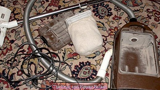 Attention: Vacuum cleaner broken by carpet cleaning
