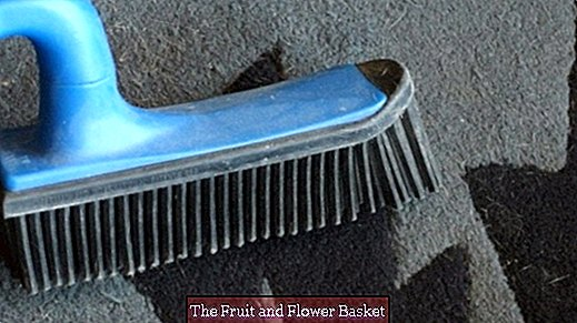 Remove animal hair from upholstery and carpets with rubber brooms