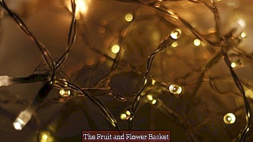 Bring fairy lights free of knots over the year