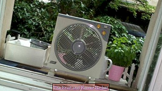 Against heat: Bring cool air into the apartment