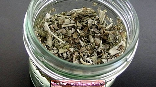 Make sage or mouthwash or rinse